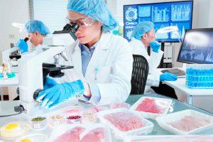 Diplomado en Nutrición Molecular para el Diseño Racional de Alimentos Funcionales
